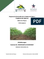 Cultivo y Produccion de La Papaya