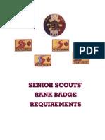 ssadvancement-handbook.pdf