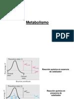 ATP y metabolismo