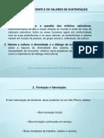 FORMAÇÃO DOCENTE E OS VALORES DE SUSTENTAÇÃO