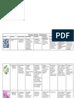 tabladebacteriasgrampositivasynegativas-