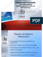 Fertilizacion Fosforada.pdf1 JUAN HIRZEL