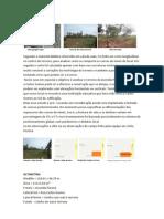 Analise Do Terreno Projeto V