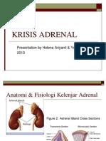 Krisis Adrenal Slide Print