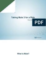 mule3-takearide-100922175137-phpapp01_2