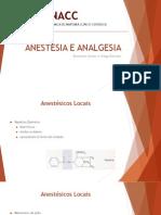 [Capacitação Interna] Anestesia e Analgesia.pptx