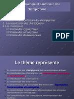 La Morphologie Et L'Anatomie Des Champignons