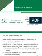 UD2-DNS.pdf