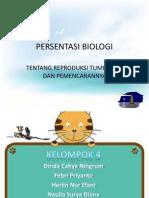 PERSENTASI BIOLOGI