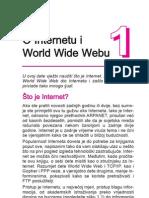 Internet i WWW