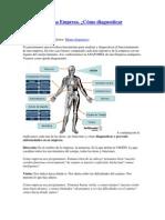 Anatomía de una Empresa