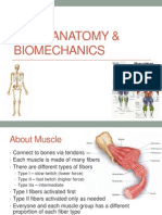Lecture 4 - Basic Anatomy and Biomechanics
