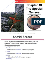13 Special Senses
