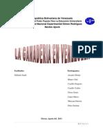 SITUACION DE LA GANADERIA EN VENEZUELA.docx