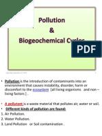 4. Pollution