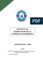 Proyectodeacreditaciondelacarreradeenf Unh 2010