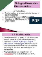 1.5 Nucleic Acids