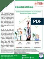 Infografía N° 1 - 2013 Ciclo de vida laboral en la región Callao