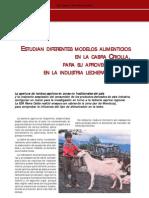 61-Cabra Lechera Regional