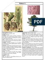 Agronomie Manuel - 60 fiches technique d'arbres et d'arbustes méditerranéen