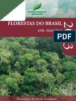 Florestas_do_Brasil_em_Resumo_2013 (1).pdf
