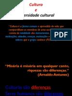 Cultura e Diversidade Cultural