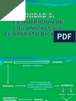 presentacinud-5ap-digestivob1b-101111110248-phpapp02-1.pptx