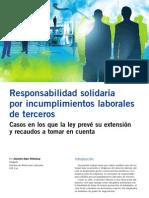 Extensión de responsabilidad.pdf