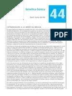 gentica1 Basica.pdf
