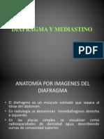 Sem 6 C-11 Diafragma y Mediastino