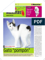 dietas caseras para perros y gatos. la alternativa saludable pdf