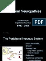 Periferal Neuropathy 06