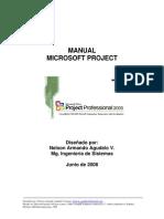 Manual Microsoft Project