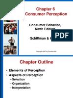Chapter 6 - Consumer Perception