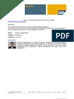 SAP AUdit Management