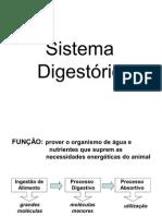57148967 Sistema Digestivo