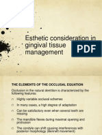 Esthetic and Occlusal Considertions