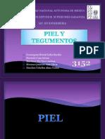 UNAM Exposicion PIEL