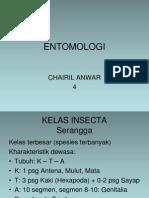 Matrik Ento4 Insecta