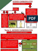 Tema 1 Acidos Carboxilicos
