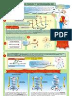 FP17-Circ-Cyclonique-08.pdf
