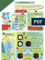 FP20-ALTI1-08.pdf