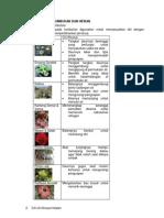 IPA - SD Kelas 6 BAB Ciri Khusus Tumbuhan & Hewan