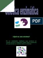 U 3 Cinetica_enzimatica
