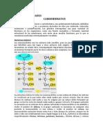 generalidades, carbohidratos