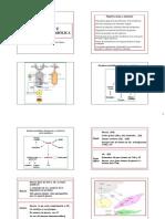 01 - Clase Regulación Metabólica 2008