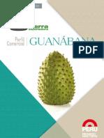 05_ Perfil Comercial de Guanabana-ok