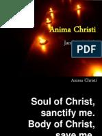 Anima Christi Arboleda