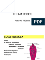 TREMATODOS power point.ppt