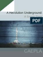 A Revolution Underground - A Sneak Peek
